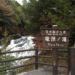 竜頭ノ滝の紅葉が見ごろ